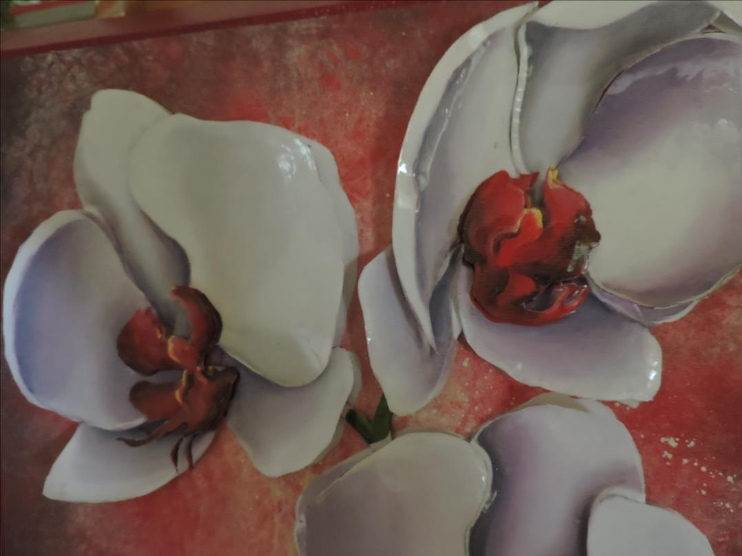 DSCN1288-Cadre 3D - 2018 - Orchidées blanches